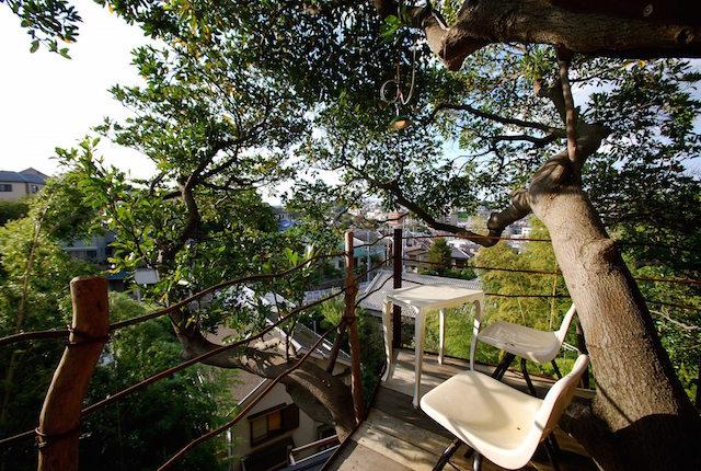 treehousecafe_nanjya_3
