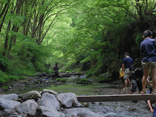 八王子summer_river